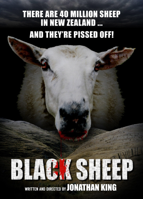 BLACK SHEEP / PECORE ASSASSINE